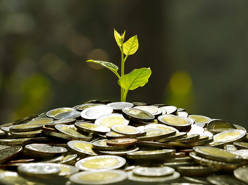 お金の山から若葉が芽吹いている